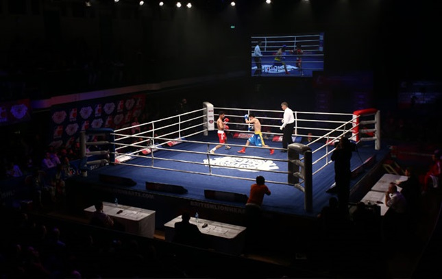 World_Series_Boxing